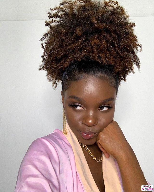 Natural hair updos 016 1