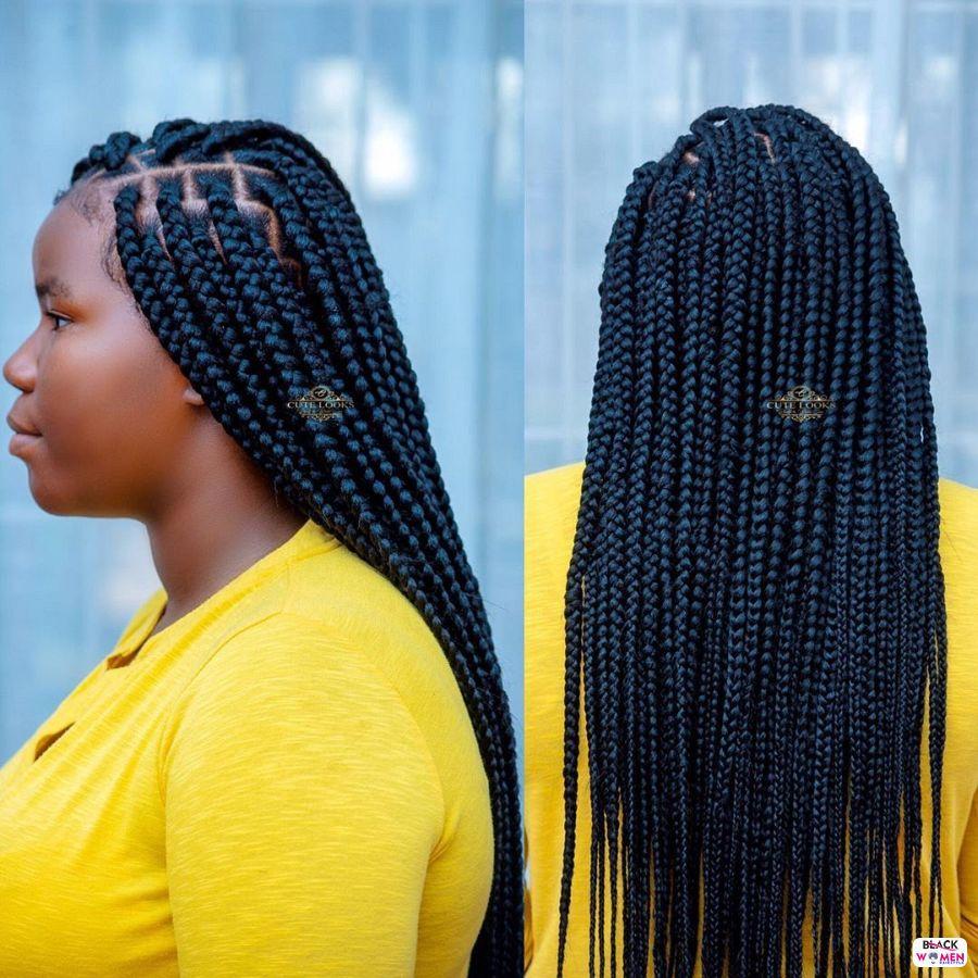 Box Braids hairstyleforblackwomen.net 2369